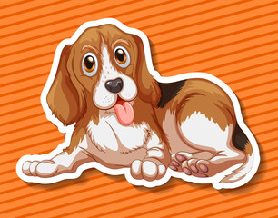 Little puppy sitting on orange background