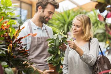 Male florist serving woman beside display in flower shop, holdin