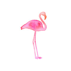 Flamingo. Hand-drawn silhouette of bird. Real watercolor drawing