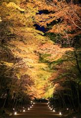 road in Daigo-ji Temple, japan.