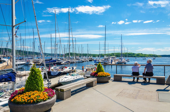 Yachts and pier with flowers, Oslo Fjord, Norway