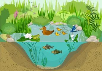 Obraz At the pond  - fototapety do salonu