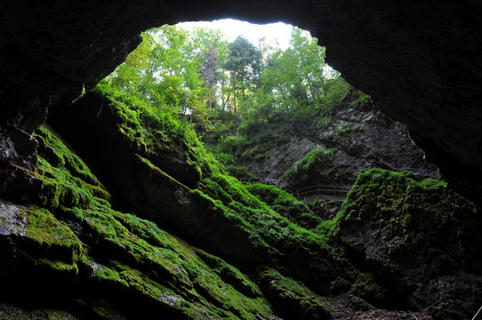 Light in cave entrance