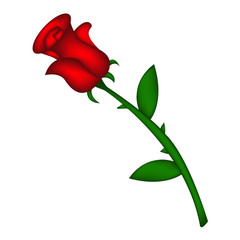 Image of realistic red rose. Vector illustration isolated on white background. Created with mesh tool.