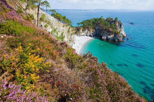 Presqu'île de Crozon, île vierge, Près du GR 34, au sud de Morgat, Finistère, Bretagne