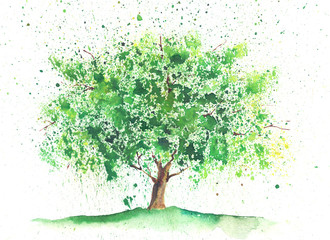 Watercolor summer tree