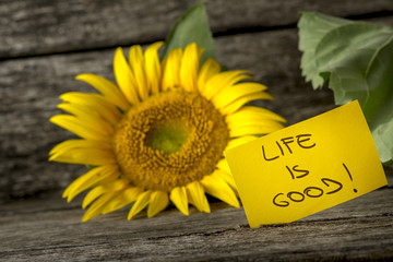 Yellow card with a Life is good message leaning on a beautiful b