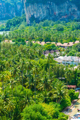 Coconut garden with resort at Railay beach