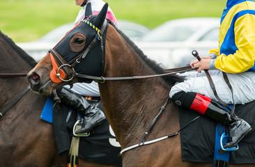 close up of jockeys on race horses