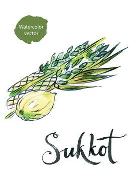 Watercolor lulav and etrog, Sukkot plants