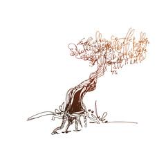 Coffee tree simple vector sketch