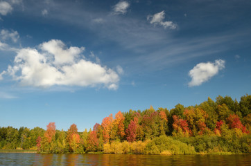 colorful autumn forest lake river sky clouds Cirrus