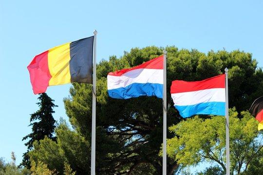Drapeaux du Benelux