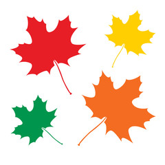 Maple leaves set vector illustration