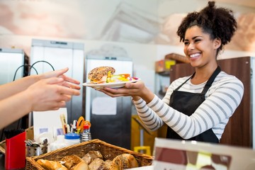 Waitress serving lunch to customer