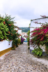Narrow streets of old town Obidos, Portugal