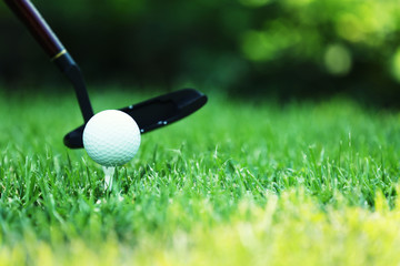 Golf balls and driver on green grass  background