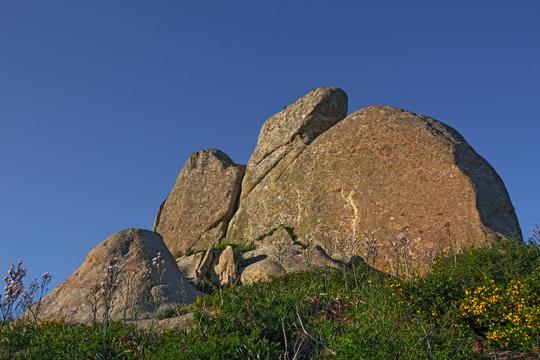 Argimusco - Star Trail behind the Eagle Monolith