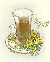 Sketch of tea cups and teapots. Fullsize raster artwork.