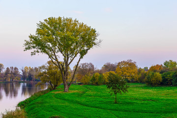 Colourful Trees on Green Grass Near the River at Sunset in Autumn