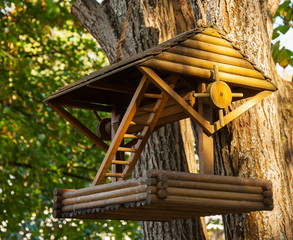 Wooden feeding trough for birds on a tree in the forest