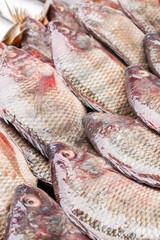 Fresh raw  fish in the market