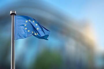 Wall Mural - European Union flag against European Parliament