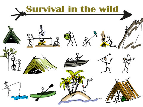 survival in the wild