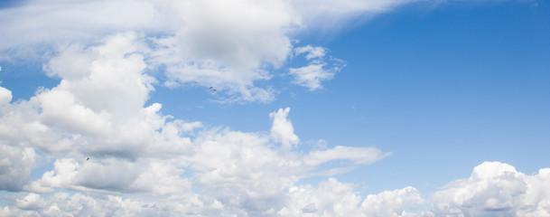 Wolkenhimmel, fliegende Möwen, Panorama
