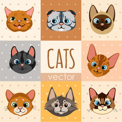A set of eight colorful cartoon cat faces