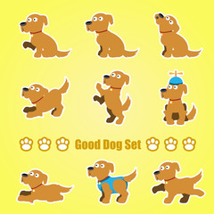 A set of playful dogs on a yellow background