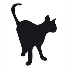 Black silhouette of cat