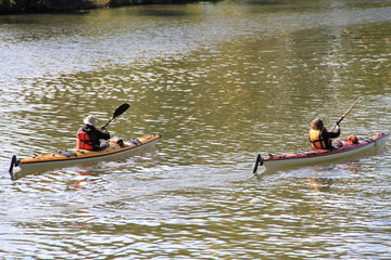 Kanu fahren auf der Saar
