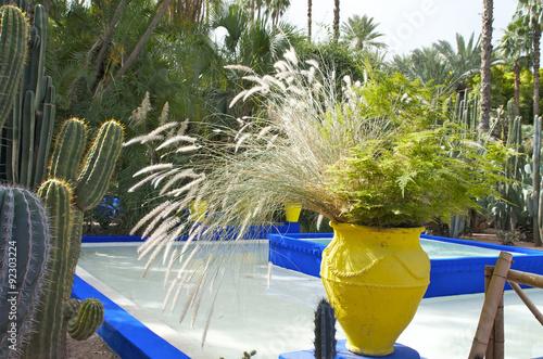 Jardin Majorelle Marrakech Maroc Stock Photo And Royalty Free