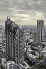 panoramic view of tokyo
