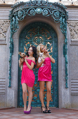 Blondie and brunette barbie girls with dogs