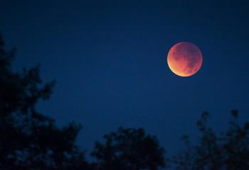Lunar total eclipse. 28 September, 2015. Ukraine