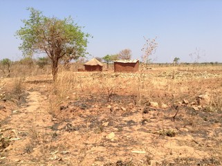 A grass-thatched house and one with corrugated iron sheets in Lusaka, zambia, africa.