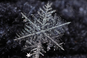 The photo of snowflake on a black background