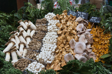 Mushroom varieties for sale at the vegetable market