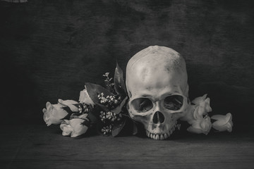 Still life black and white photography with human skull and rose