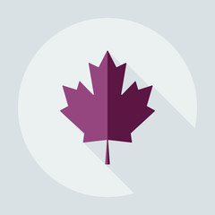 Flat modern design with shadow icons maple leaf