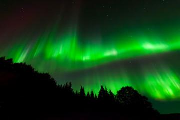Green ribbons of aurora lights