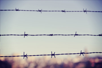 Freedom concept: barbed wire closeup vintage blur background