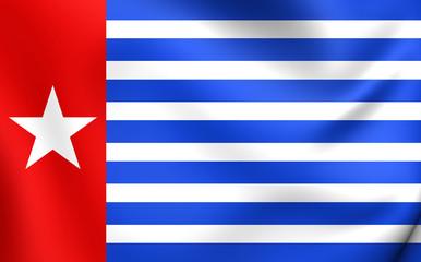 Morning Star Flag