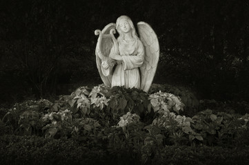 Sculpture of angel in dark