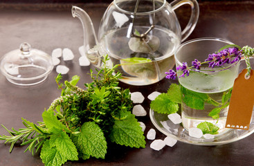 Herbs tisane and mint tea cup still life