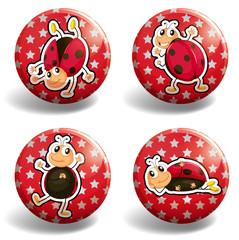 Ladybug on red badges