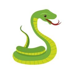 Snake , Poison