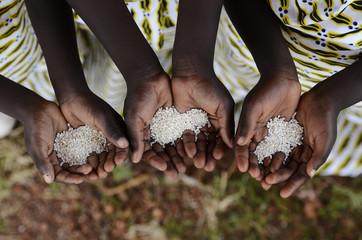 Group of African Black Children Holding Rice Malnutrition Starvation Hunger. Starving Hunger Symbol. Black African girls holding rice as a malnutrition symbol.